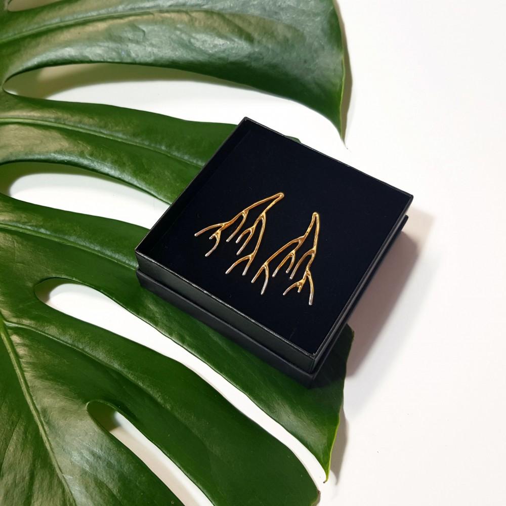 Auskarai 'Growth'